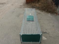 Live trap meter with a pedal. Kotolovka. Cat trap